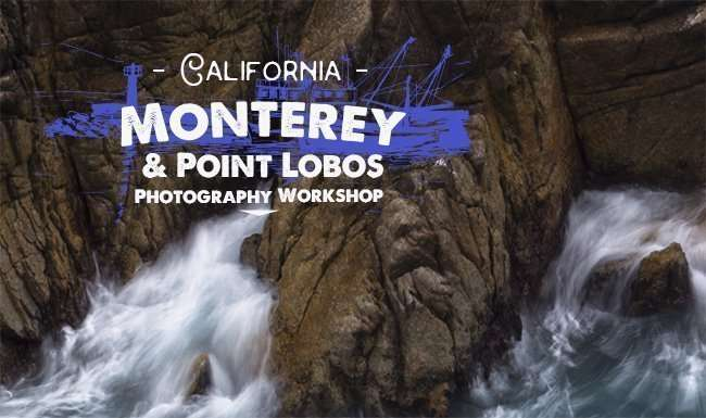 Monterey & Point Lobos photography workshop